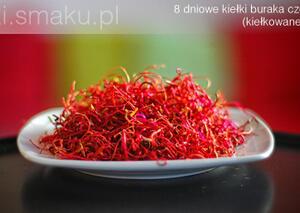 Kiełki buraka ćwikłowego, czerwonego | kielkismaku.pl