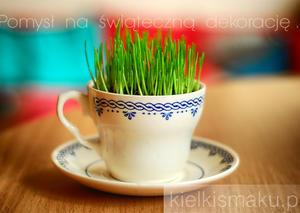 Pomysł na świąteczną dekorację ... | kielkismaku.pl